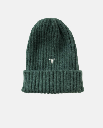 CLUB BEANIE green